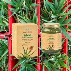 Vonderweid - Ricetta di Padre Romano Zago è un preparato fresco e biologico di Aloe arborescens, miele e distillato di grano biologici,… Aloe, Coffee, Drinks, Gifts, Instagram, Kaffee, Drinking, Beverages, Presents