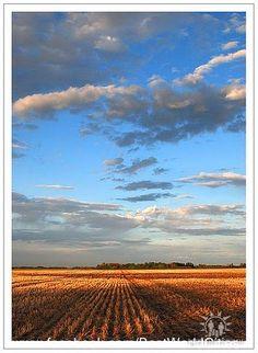 also horizon line -Saskatoon, Saskatchewan Abbotsford Bc, Travel Log, 1 Place, Grade 2, Social Studies, Geography, Random Things, Places Ive Been, Scenery