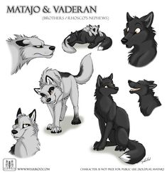 Aaaaand... next WeuUkoo Wolves character sheet scribbles. This time it's Rhosco's one year old nephews (his brother's sons), Matajo and Vaderan. Matajo is the light one, more aggressiv and impatien...