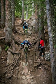 As a beginner mountain cyclist, it is quite natural for you to get a bit overloaded with all the mtb devices that you see in a bike shop or shop. There are numerous types of mountain bike accessori… Mountain Biking Quotes, Mountain Biking Women, Best Mountain Bikes, Mountain Bike Trails, Mt Bike, Bike Mtb, Cycling Bikes, Cycling Jerseys, Road Bike