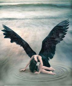 DARK ANGELS PICTURE