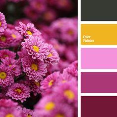 Color Palette Ideas | Page 3 of 352 | ColorPalettes.net