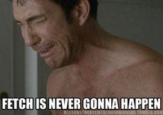 Reasons to Cry Like Ben Harmon.