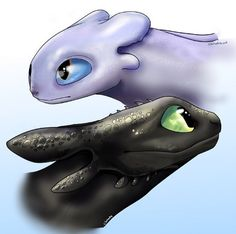 Practicing drawing Toothless and the Lightfury! Feedback really helps, any tips? Toothless Drawing, How To Draw Toothless, Clementine Art, Night Fury Dragon, Httyd Dragons, Hiccup And Astrid, Dragon Trainer, Drawing Practice, Dragon Art