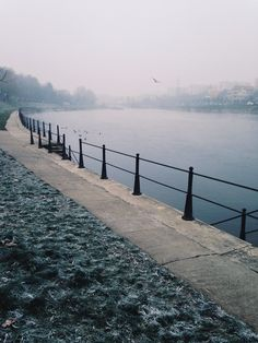 Winter in Cluj-Napoca is cold, but the fog makes for lovely views along the Somes River.