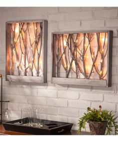 20'' LED Micro String Wood Branch Wall Art Set