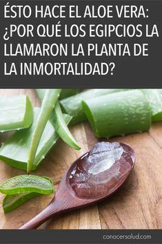 Ésto hace el Aloe Vera: Por qué los egipcios la llamaron la planta de la inmortalidad? #salud