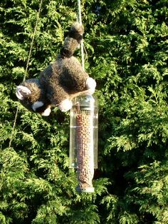 DIY squirrel proof bird feeder  LOL this is genius & also hilarious!