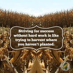 success without hard work