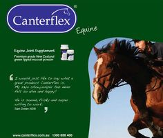 I would just like to say what a great product Canterflex is. My 23yo showjumper has never felt so alive and happy! He is sound, frisky and super willing to work. Sam Drewe NSW