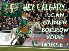 Good idea - don' you think! Go Rider, Saskatchewan Roughriders, Grey Cup, Saskatchewan Canada, Rough Riders, Football Team, Calgary, Green Colors, Haha