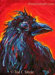 """Russell Crow - by Tod C Steele"" - Original Fine Art for Sale - © Tod Steele Blackbird Singing, Hand Hooked Rugs, Halloween Art, Crows, Fine Art Gallery, Ravens, Bird Art, Art For Sale, Still Life"