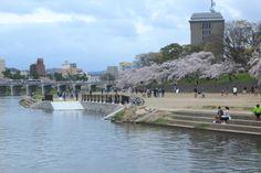 430:「岡崎公園の河川で桜並木と橋梁が綺麗な殿橋を背景に緑地で、のんびりと語らうカップルやおっとりと桜見物する皆さんを構図。」@岡崎公園