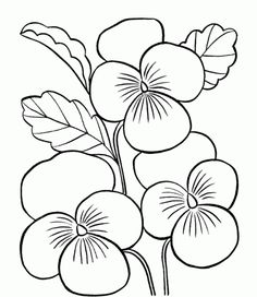 Printable Coloring Pages Of 57 Free Flowers 2736