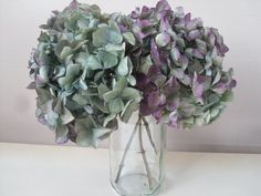 Beautiful, colorful hydrangeas are amongst the most popular flowers to be used in dried floral arrangements. The most important step in preserving and drying hydrangeas is choosing the right time to cut them. Follow the... Read More