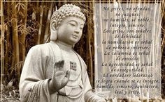 buda Osho, Karma, Graffiti, Mindfulness, Messages, Quotes, Interior, Wise Words, Envy