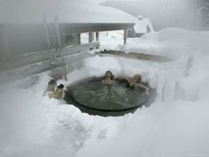 1000 images about pool and spa in winter on pinterest hot tubs the snow and spas. Black Bedroom Furniture Sets. Home Design Ideas