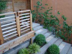 Noe Valley - contemporary - landscape - san francisco - Randy Thueme Design Inc. - Landscape Architecture