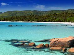 L'eau turquoise de la plage de Palombaggia (Corse)