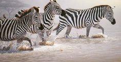 Risky Crossing - Zebras by wildlife artist Daniel Smith