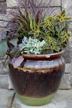 Container Gardening Ideas | Mavis Garden Blog - Ideas for Summer Container Gardening | One Hundred ... by leah