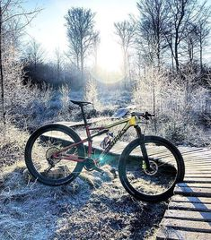 """3,356 Likes, 13 Comments - Specialized MTB (@iamspecialized_mtb) on Instagram: """"Cold but gold. ❄️ ⠀ ⠀ #iamspecialized #xcmtb #newepic #roval 