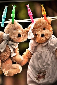 This brings back memories of hanging things on the clothes line growing up. My Teddy Bear, Cute Teddy Bears, What A Nice Day, Cute Bear, Jolie Photo, Hanging Out, Cuddling, Babyshower, Little Girls