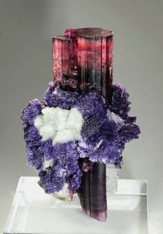 Tourmaline with Lepidolite and Feldspar Oceanview Mine, California