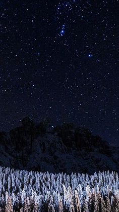 Night Mountain Sky Space Star Cold Winter #iPhone #5s #wallpaper