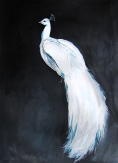 35% Off SALE  White Peacock II  Acrylic Painting  por MaiAutumn