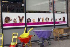 De wens van de firma van Westrienen uit Est, een verfraaide winkelruit met met honden en katten. Persoonlijk denken wij dat dit goed geslaagd is, de foto's zijn zo scherp dat je letterlijk de haren kunt tellen.