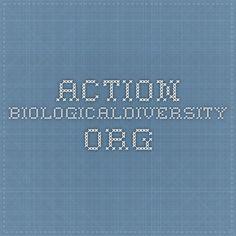 action.biologicaldiversity.org