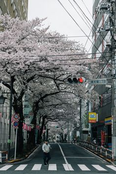 Traveling through Japan from Tokyo, Kyoto, and Osaka, including stays in Shinjuku and Harajuku Aesthetic Japan, Japanese Aesthetic, Cyclades Greece, Places To Travel, Places To Visit, Japan Beach, Japon Tokyo, Japan Country, Photographie Portrait Inspiration