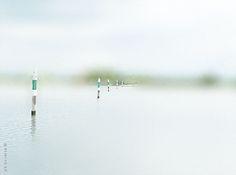 laguna <3 ph©stefanouvietta
