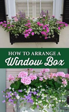 French Home Decor How to Arrange a Window Box - Crocker Nurseries.French Home Decor How to Arrange a Window Box - Crocker Nurseries Window Box Plants, Window Box Flowers, Window Planter Boxes, Planter Ideas, Window Boxes Summer, Railing Flower Boxes, Railing Planter Boxes, Balcony Flower Box, Diy Flower Boxes