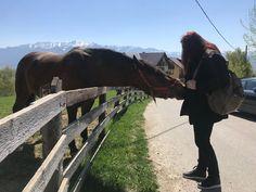 New friend@Pestera, Moeciu, jud. Brasov