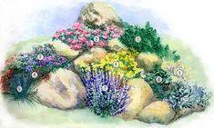 Дизайн усадьба Лоян| Ландшафтный дизайн в Донецке, ландшафтное проектирование, посадка крупномеров, газонная трава Идеи для оформления цветника