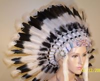 indian headdress  Want!