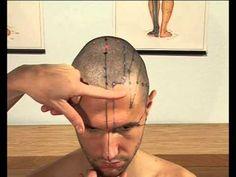 Guida pratica alla ricerca dei punti di agopuntura - Meridiano di Vescica BL (videocorso in dvd)