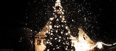 GIPHY is your top source for the best & newest GIFs & Animated Stickers online. Find everything from funny GIFs, reaction GIFs, unique GIFs and more. Christmas Tree Gif, Xmas Gif, Christmas Lights, Christmas Holidays, Happy Holidays, Kaisoo, Gif Noel, Edinburgh Christmas, Gifs