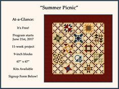 2017 Summer Sew-Along - Piecing the Past Quilts