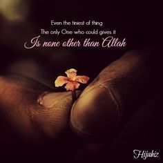 hijabiz: Therefore ask only from Allah