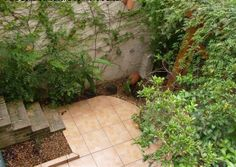 quintal do jardim, visto do alto - garden structure, outside architecture, greenhouse, construção no jardim