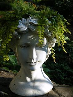 Thrilling About Container Gardening Ideas. Amazing All About Container Gardening Ideas. Head Planters, Garden Planters, Succulents Garden, Container Plants, Container Gardening, Echeveria, Step Kids, Cactus Y Suculentas, Arte Floral