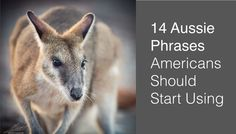 14 Aussie Phrases Americans Should Start Using