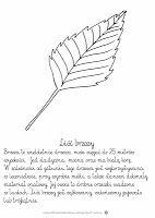 Liście...szablony i karty pracy Educational Crafts, Garden Tools, Templates, Montessori, Doodle, Lion, Polish, Teacher, Paintings