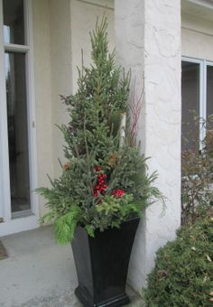 Another pretty winter #planter by Barrett Lawn Care at a residential property. Greens include spruce tips of various sizes, birch branches, and eucalyptus branches. #holidaydecor #winterplanter #christmasdecor