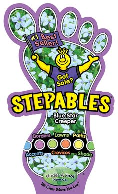 STEPABLES.COM - Plants that tolerate foot traffic