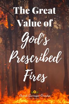 Do you know that God uses prescribed fires in our lives? I've been thinking about the biblical concept of refinement, and how that applies to us. #prescribedfire #refinement #spiritualgrowth #devotion Christian Devotions, Christian Encouragement, Christian Faith, Christian Living, Quotes About Hard Times, Quotes About God, Faith Over Fear, Leap Of Faith, Keep The Faith