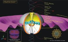 Event Horizon Black Hole | The Event Horizon and the Black Hole